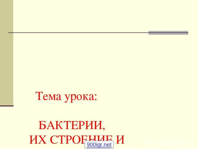 Тема урока: БАКТЕРИИ, ИХ СТРОЕНИЕ И ЖИЗНЕДЕЯТЕЛЬНОСТЬ. 6 класс Учитель биологии МОУ СОШ № 60 г. Магнитогорска Шанкеева А.К. 900igr.net