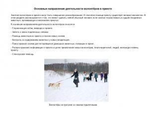 Основные направления деятельности волонтёров в приюте Занятия волонтёров в приют