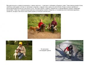 Моя деятельность в приюте начиналась с самого простого – с прогулок с собаками и