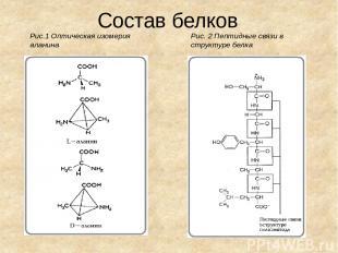 Состав белков Рис.1 Оптическая изомерия аланина Рис. 2 Пептидные связи в структу