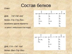 Состав белков Ответ: ДНК: ГАГ-ГАГ-ААГ белок:–Глу–Глу–Лиз– (возможны другие вариа