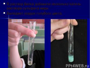 В раствор белка добавили несколько капель раствора сульфата меди. Выпадает осадо