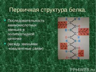 Первичная структура белка. Последовательность аминокислотных звеньев в полипепти