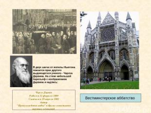 Вестминстерское аббатство В двух шагах от могилы Ньютона покоится прах другого в