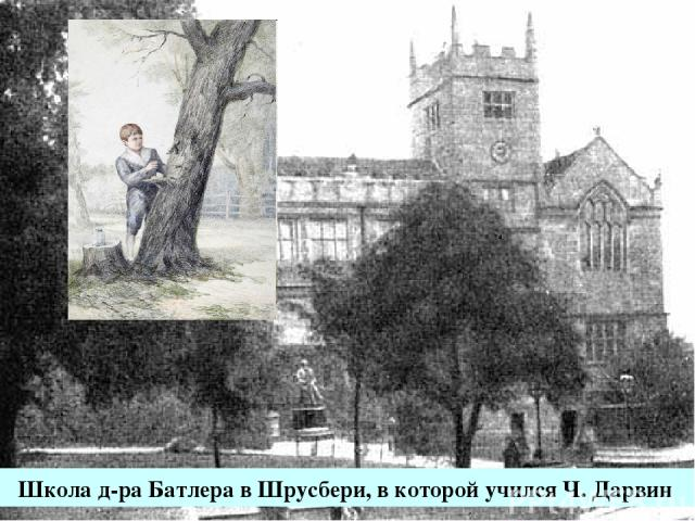 Школа д-ра Батлера в Шрусбери, в которой учился Ч. Дарвин