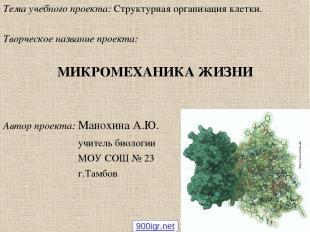 Тема учебного проекта: Структурная организация клетки. Творческое название проек