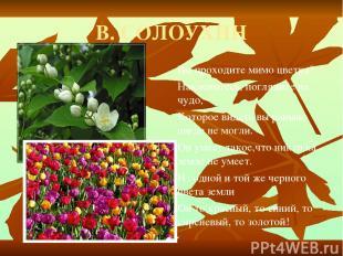 В. СОЛОУХИН Вы проходите мимо цветка? Наклонитесь, поглядите на чудо, Которое ви