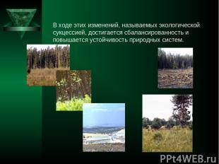 В ходе этих изменений, называемых экологической сукцессией, достигается сбаланси