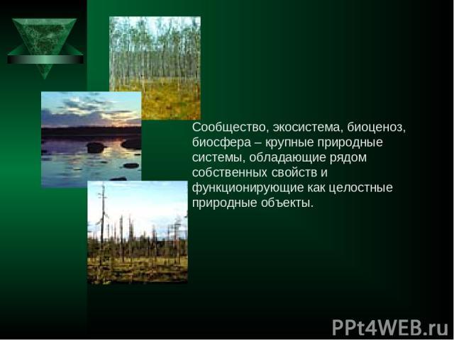 Сообщество, экосистема, биоценоз, биосфера – крупные природные системы, обладающие рядом собственных свойств и функционирующие как целостные природные объекты.