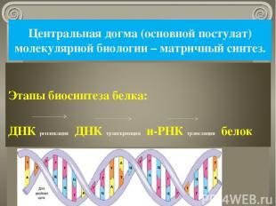 Центральная догма (основной постулат) молекулярной биологии – матричный синтез.