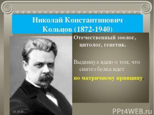 Николай Константинович Кольцов (1872-1940) *