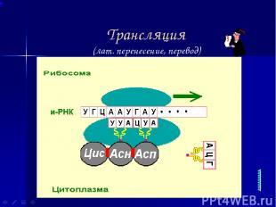 Трансляция (лат. перенесение, перевод)