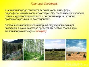 Границы биосферы К неживой природе относятся верхняя часть литосферы, гидросфера