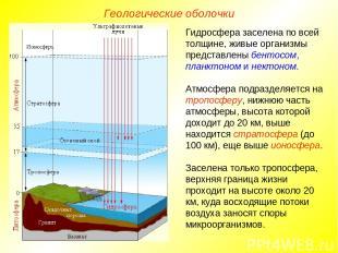 Гидросфера заселена по всей толщине, живые организмы представлены бентосом, план