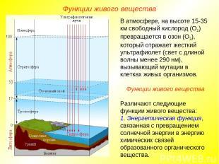 В атмосфере, на высоте 15-35 км свободный кислород (О2) превращается в озон (О3)