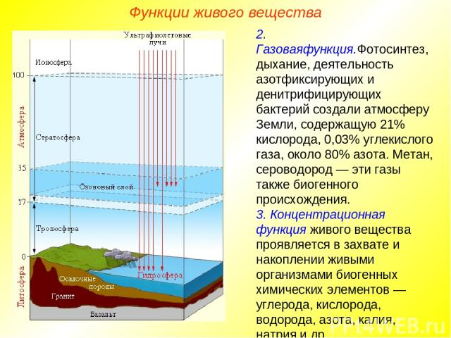 Функции живого вещества 2. Газоваяфункция.Фотосинтез, дыхание, деятельность азотфиксирующих и денитрифицирующих бактерий создали атмосферу Земли, содержащую 21% кислорода, 0,03% углекислого газа, около 80% азота. Метан, сероводород — эти газы также …