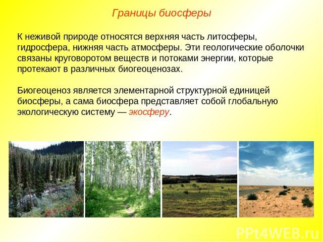 Границы биосферы К неживой природе относятся верхняя часть литосферы, гидросфера, нижняя часть атмосферы. Эти геологические оболочки связаны круговоротом веществ и потоками энергии, которые протекают в различных биогеоценозах. Биогеоценоз является э…