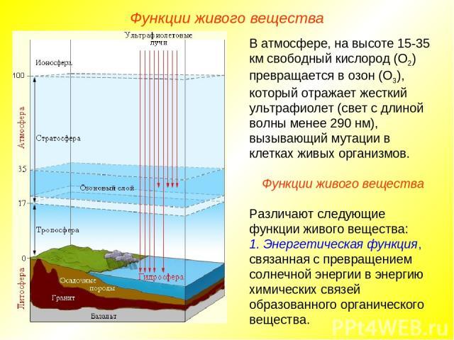 В атмосфере, на высоте 15-35 км свободный кислород (О2) превращается в озон (О3), который отражает жесткий ультрафиолет (свет с длиной волны менее 290 нм), вызывающий мутации в клетках живых организмов. Функции живого вещества Различают следующие фу…