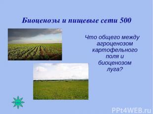 Биоценозы и пищевые сети 500 Что общего между агроценозом картофельного поля и б