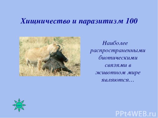 Хищничество и паразитизм 100 Наиболее распространенными биотическими связями в животном мире являются…