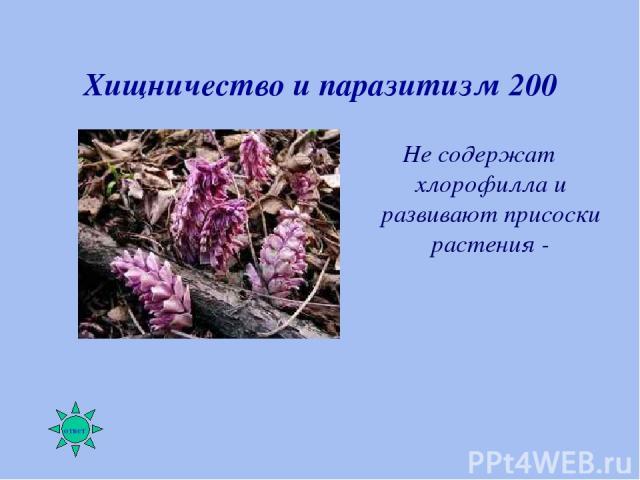 Хищничество и паразитизм 200 Не содержат хлорофилла и развивают присоски растения -