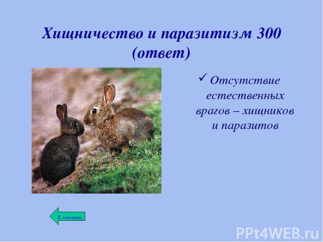 Хищничество и паразитизм 300 (ответ) Отсутствие естественных врагов – хищников и паразитов