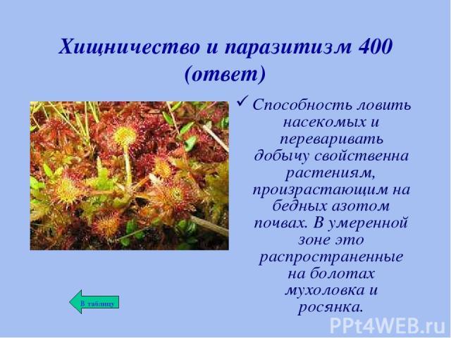 Хищничество и паразитизм 400 (ответ) Способность ловить насекомых и переваривать добычу свойственна растениям, произрастающим на бедных азотом почвах. В умеренной зоне это распространенные на болотах мухоловка и росянка.