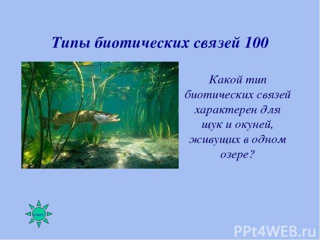 Типы биотических связей 100 Какой тип биотических связей характерен для щук и окуней, живущих в одном озере?