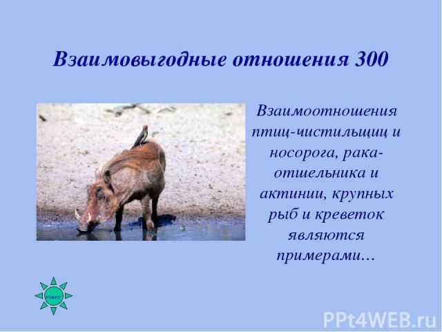 Взаимовыгодные отношения 300 Взаимоотношения птиц-чистильщиц и носорога, рака-отшельника и актинии, крупных рыб и креветок являются примерами…
