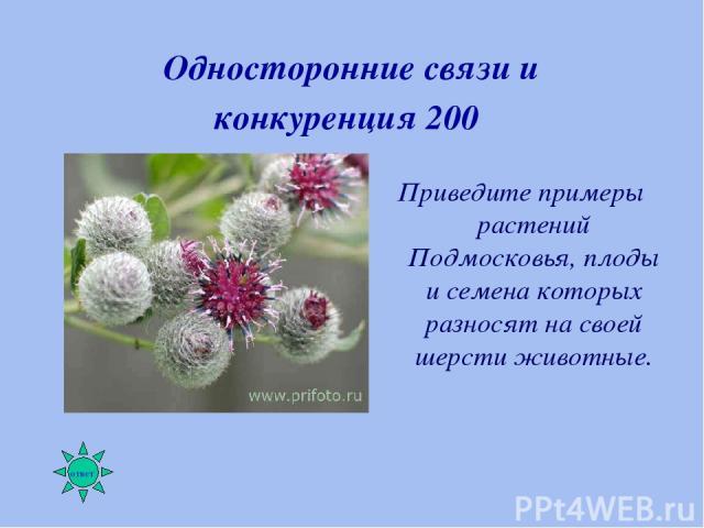 Односторонние связи и конкуренция 200 Приведите примеры растений Подмосковья, плоды и семена которых разносят на своей шерсти животные.