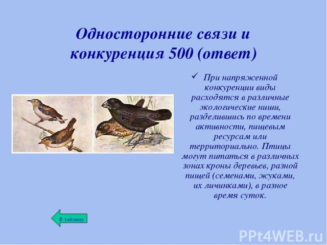 Односторонние связи и конкуренция 500 (ответ) При напряженной конкуренции виды расходятся в различные экологические ниши, разделившись по времени активности, пищевым ресурсам или территориально. Птицы могут питаться в различных зонах кроны деревьев,…