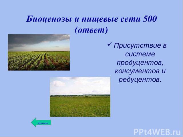 Биоценозы и пищевые сети 500 (ответ) Присутствие в системе продуцентов, консументов и редуцентов.