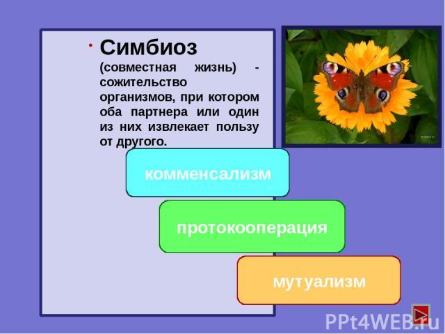 Антибиоз хищничество паразитизм конкуренция отношения, при которых оба вида или один из них испытывает отрицательное влияние.