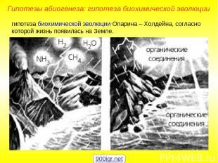 гипотеза биохимической эволюции Опарина – Холдейна, согласно которой жизнь появи