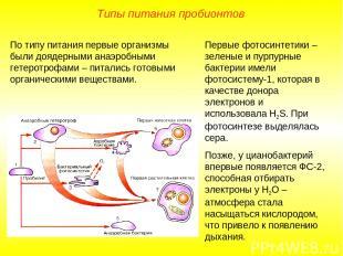 Первые фотосинтетики – зеленые и пурпурные бактерии имели фотосистему-1, которая
