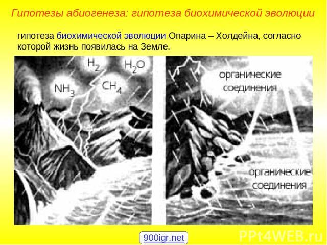 гипотеза биохимической эволюции Опарина – Холдейна, согласно которой жизнь появилась на Земле. Гипотезы абиогенеза: гипотеза биохимической эволюции 900igr.net