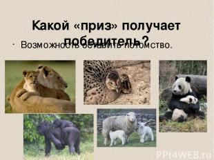 http://www.e-drofa.ru/materials/bio9/objects/_borba_za_s_00000173/brachnyj_turni