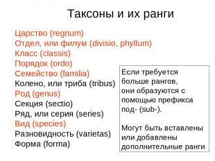 Царство (regnum) Отдел, или филум (divisio, phyllum) Класс (classis) Порядок (or
