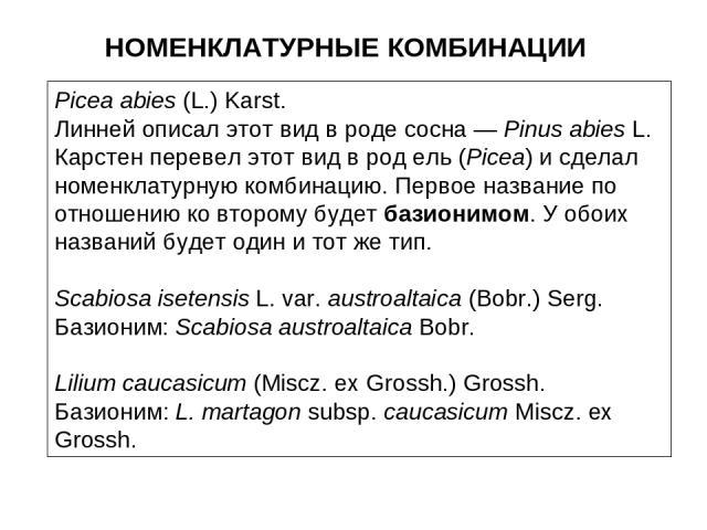 НОМЕНКЛАТУРНЫЕ КОМБИНАЦИИ Picea abies (L.) Karst. Линней описал этот вид в роде сосна — Pinus abies L. Карстен перевел этот вид в род ель (Picea) и сделал номенклатурную комбинацию. Первое название по отношению ко второму будет базионимом. У обоих н…