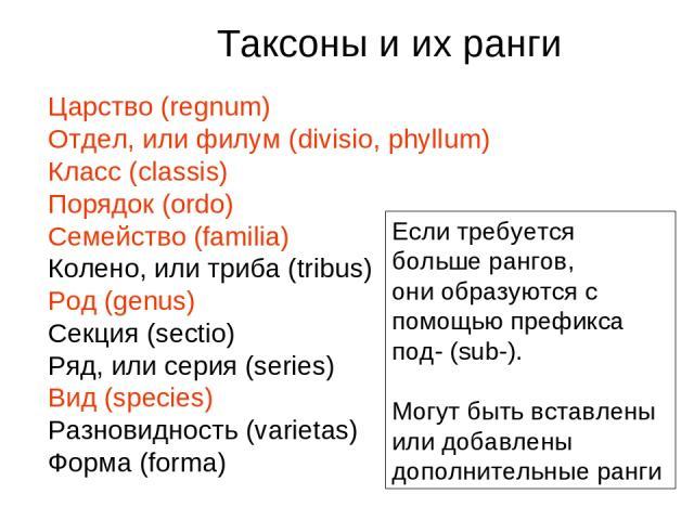Царство (regnum) Отдел, или филум (divisio, phyllum) Класс (classis) Порядок (ordo) Семейство (familia) Колено, или триба (tribus) Род (genus) Секция (sectio) Ряд, или серия (series) Вид (species) Разновидность (varietas) Форма (forma) Таксоны и их …