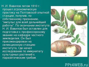 Н. И. Вавилов летом 1910г. прошел агрономическую практику на Полтавской опытной