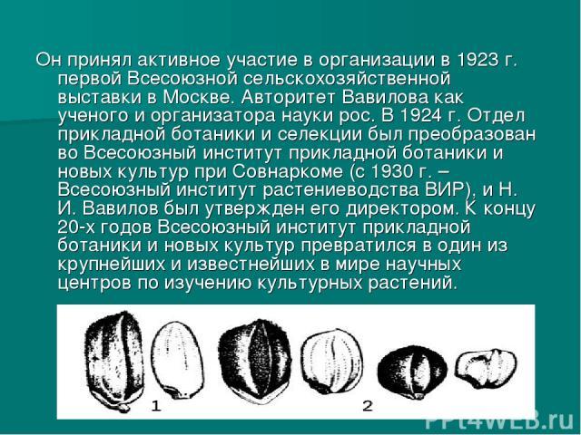 Он принял активное участие в организации в 1923г. первой Всесоюзной сельскохозяйственной выставки в Москве. Авторитет Вавилова как ученого и организатора науки рос. В 1924г. Отдел прикладной ботаники и селекции был преобразован во Всесоюзный инсти…