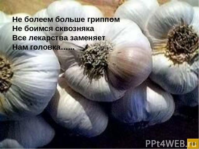 Не болеем больше гриппом Не боимся сквозняка Все лекарства заменяет Нам головка…...