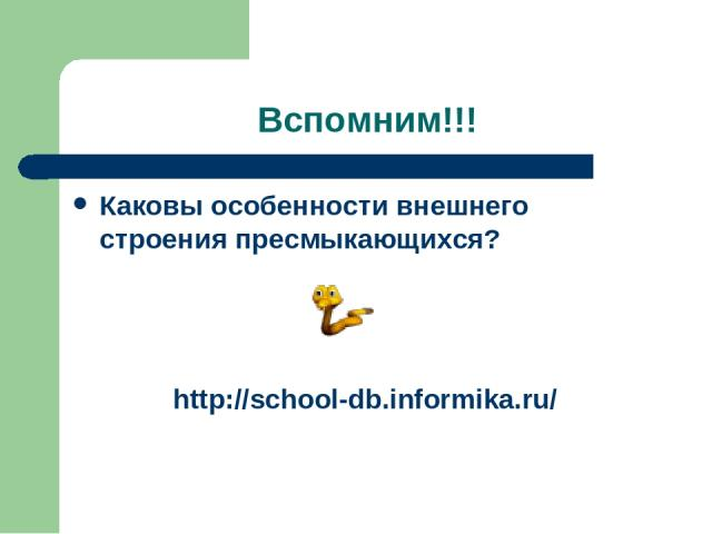 Вспомним!!! Каковы особенности внешнего строения пресмыкающихся? http://school-db.informika.ru/