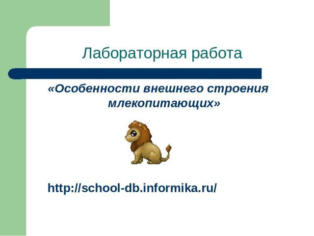 Лабораторная работа «Особенности внешнего строения млекопитающих» http://school-db.informika.ru/
