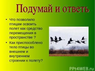 Что позволило птицам освоить полет как средство перемещения в пространстве ? Как