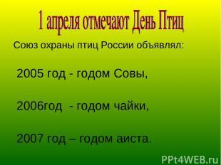 Союз охраны птиц России объявлял: 2005 год - годом Совы, 2006год - годом чайки,