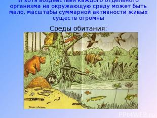 И хотя воздействия каждого отдельного организма на окружающую среду может быть м
