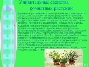 Удивительные свойства комнатных растений Комнатные растения не только красивы, н