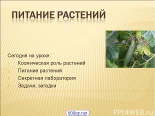Сегодня на уроке: Космическая роль растений Питание растений Секретная лаборатор